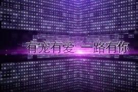 广州有宠集团巽寮湾彩色跑拓展培训