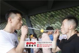 广州拓展训练能带来什么
